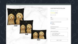Free Add custom features or code to Shopify Store