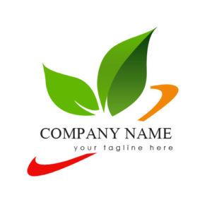 Design logo and visual branding